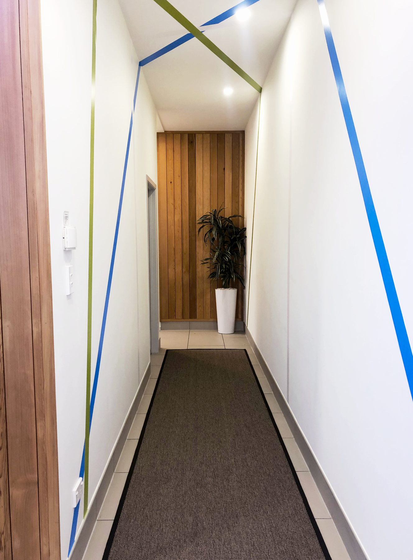 commercial office hallway with wall decals, wood panelling, plant and hallway runner