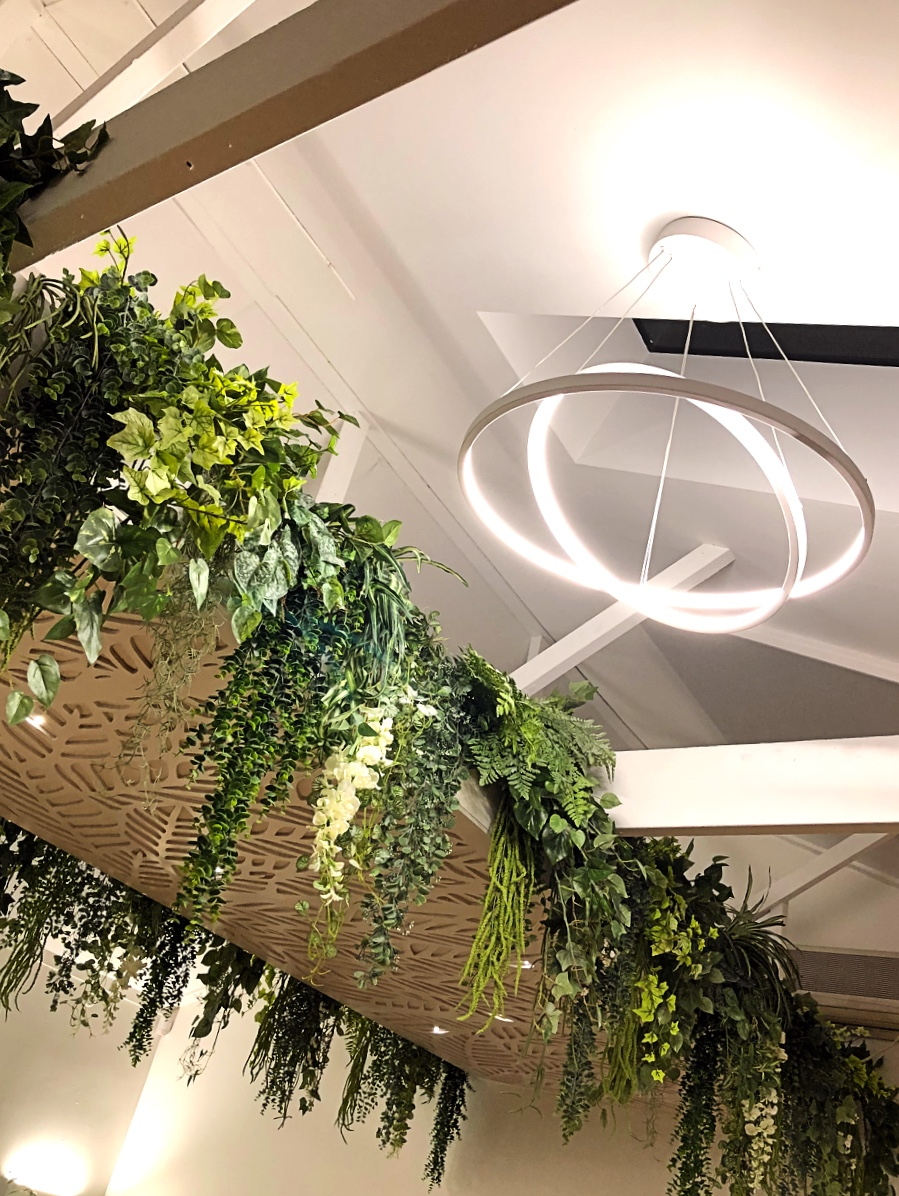 modern rings statement ceiling lighting with waterfall plants